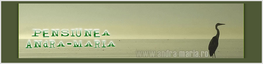 PENSIUNEA ANDRA-MARIA Logo