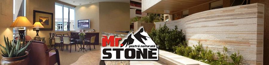 Mr Stone Logo