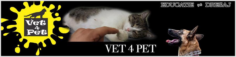 Clinica veterinara Vet 4 Pet Logo