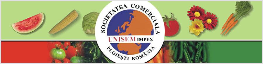 Unisem Logo