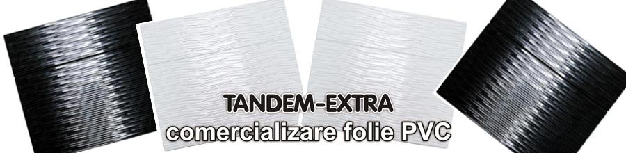 Tandem-Extra Logo