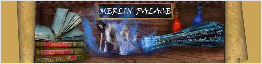 Merlin Palace Logo