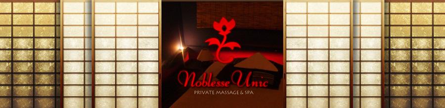 NOBLESSE UNIC Logo