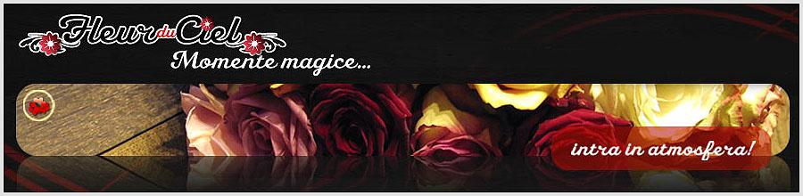 Fleur Du Ciel Logo