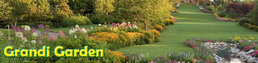 Grandi Garden, Branesti / Ilfov - Servicii de amenajare si intretinere spatii verzi Logo