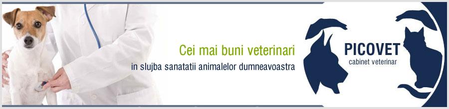 Picovet-cabinet veterinar-Bucuresti Logo