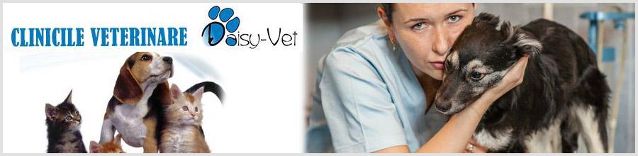 Clinica Veterinara Daisy Vet sector 1 Logo