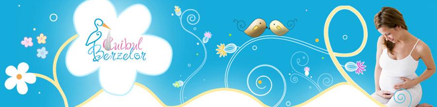 Cuibul Berzelor - Cursuri de educatie prenatala pentru gravide Logo