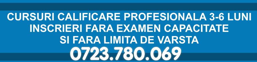 CURSURI DE CALIFICARE PROFESIONALA Logo