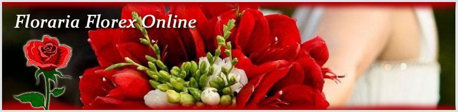 Floraria Florex Online Logo