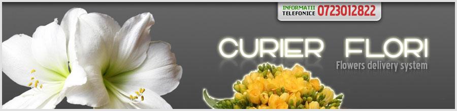 CURIER FLORI Logo