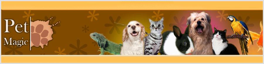 Pet Magic Logo