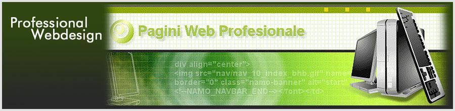 Professional Webdesign Logo