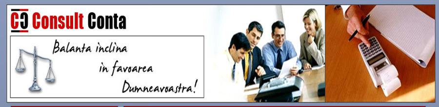 CONSULT CONTA - SERVICII DE CONTABILITATE Bucuresti Logo