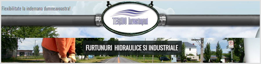 TEGADO INVESTMENT furtunuri in industriale Pantelimon Logo