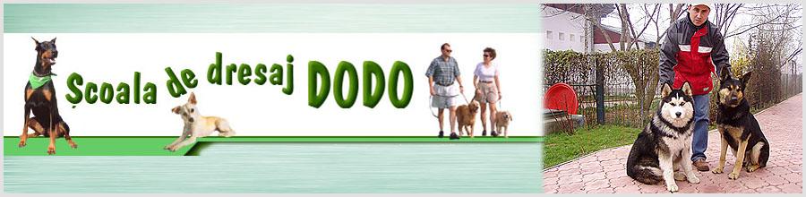 Scoala de dresaj Dodo Logo