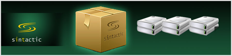 SINTACTIC GRUP Logo
