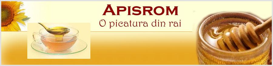 APISROM Logo