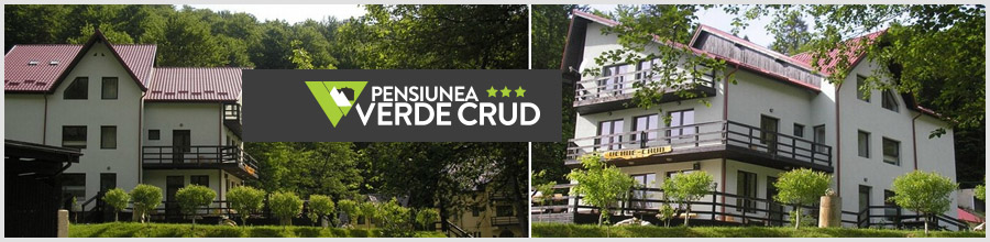 PENSIUNEA VERDE-CRUD*** - jud. BRASOV Logo