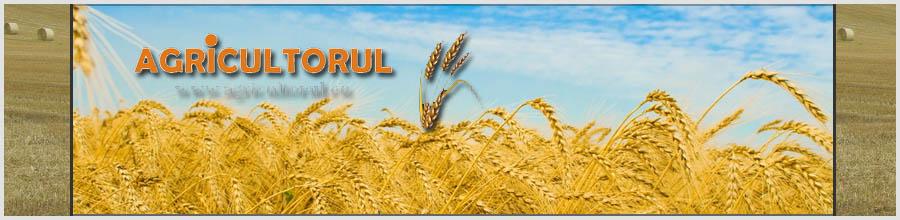 AGRICULTORUL Logo