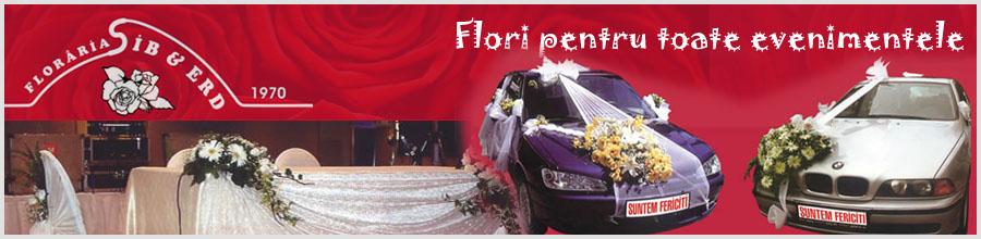 FLORARIA SIBERD Logo