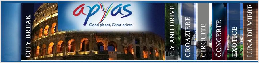 APYAS INTERNATIONAL Logo