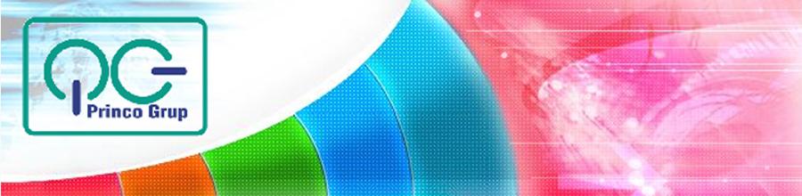 PRINCO GRUP Logo