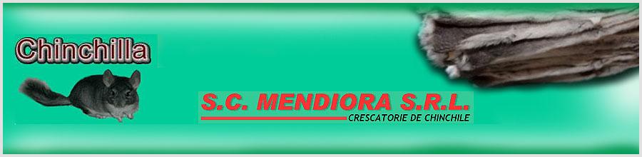 MENDIORA Logo