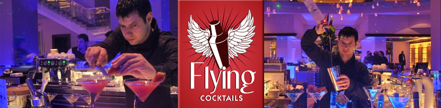 Flying Cocktails agentie de barmani specializata in bartendingul profesionist Bucuresti Logo