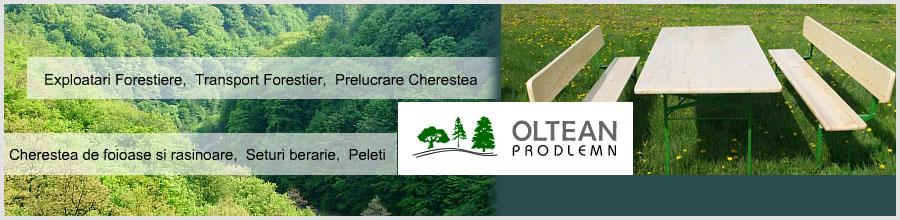 OLTEAN PRODLEMN Logo