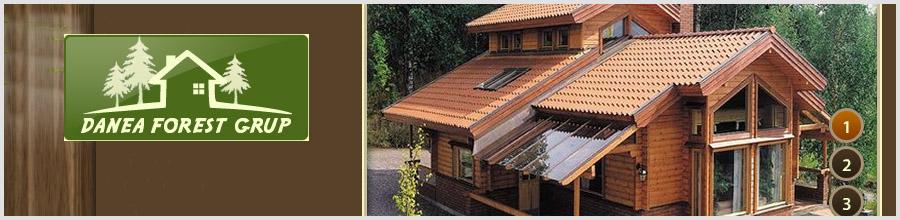 Danea Forest Grup - Ferestre, usi, mobilier, scari din lemn, Neagra Sarului / Suceava Logo