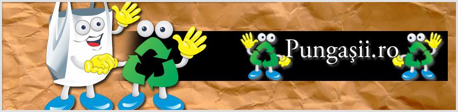 PUNGAsii Logo