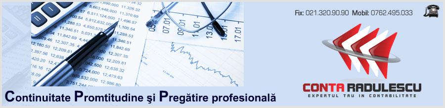 Conta Radulescu - Servicii contabilitate Bucuresti Logo