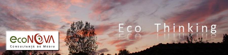 Econova Logo