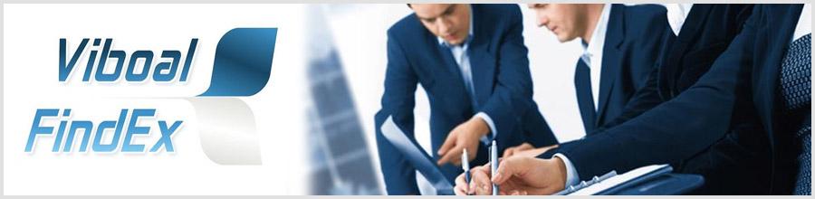 Viboal Findex Consultanta fiscala, Expertize judiciare fiscale si contabile Bucuresti Logo