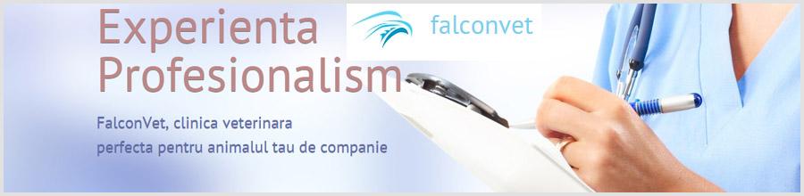 Falcon Vet-cabinet veterinar-Bucuresti Logo