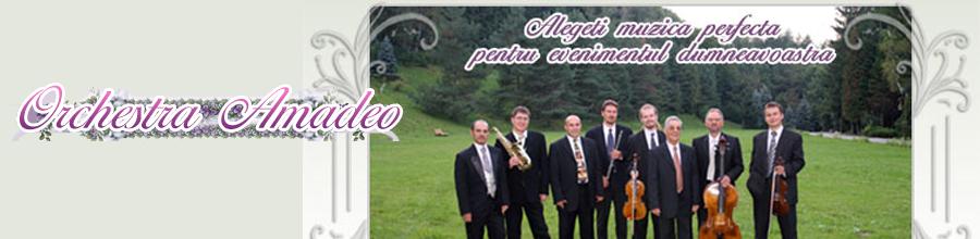 Orchestra Amadeo - formatie de nunta Logo