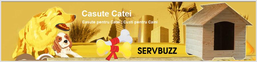 Servbuzz - Magazin online casute catei, Brasov Logo