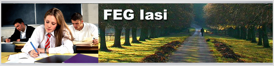 FEG Iasi Logo