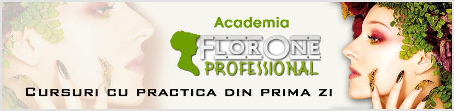 Academia Florone Professional Logo
