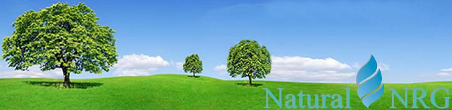 Natural NRG Logo