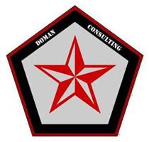 DOMAN CONSULTING Logo