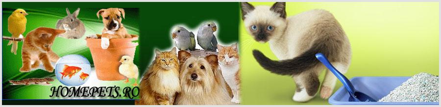 HOMEPETS Magazin online hrana si accesorii animalele Logo