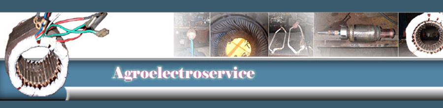 Agroelectroservice, Deva / Hunedoara - Reparatii motoare electrice Logo