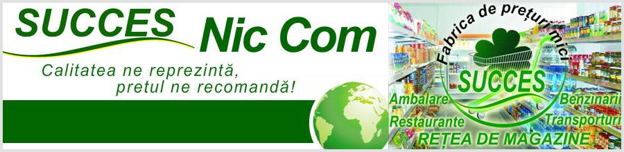 Succes Nic Com Logo