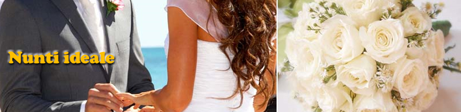 Nunti ideale Logo