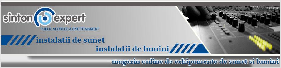 SINTON EXPERT Logo