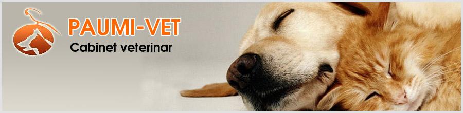 Paumi Vet-cabinet veterinar-Snagov Logo