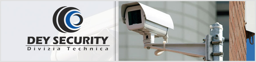 DEY SECURITY DIVIZIA TEHNICA Logo