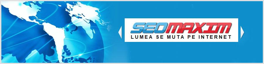 SEOMAXIM Logo